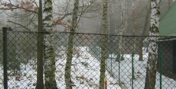 2009 břízy v ATC