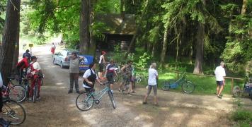 2008 kola v přírodě